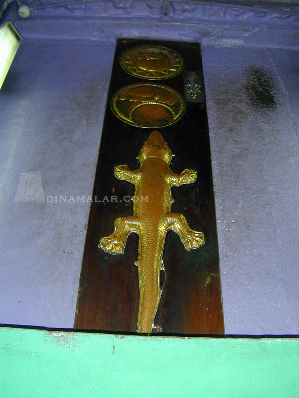 Lizard temple