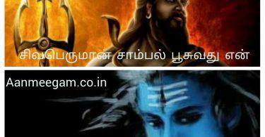 Shiva body ash