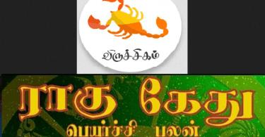 Viruchigam Rahu Ketu palan 2019